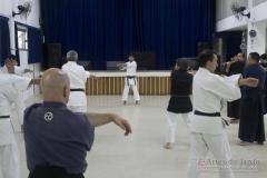 AdJ_Seminario-Bujutsu_006