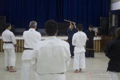 AdJ_Seminario-Bujutsu_013
