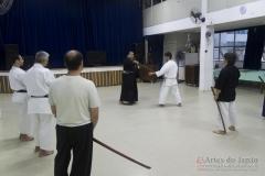 AdJ_Seminario-Bujutsu_016
