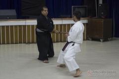 AdJ_Seminario-Bujutsu_017