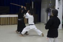AdJ_Seminario-Bujutsu_018
