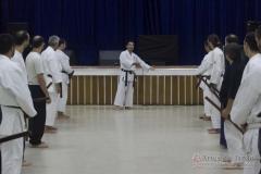 AdJ_Seminario-Bujutsu_019