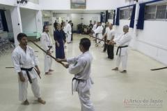 AdJ_Seminario-Bujutsu_020
