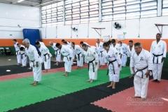 Seminario Internacional Com Kyoshi-Shihan Gonzalo Ramirez Ortiz 8º Dan