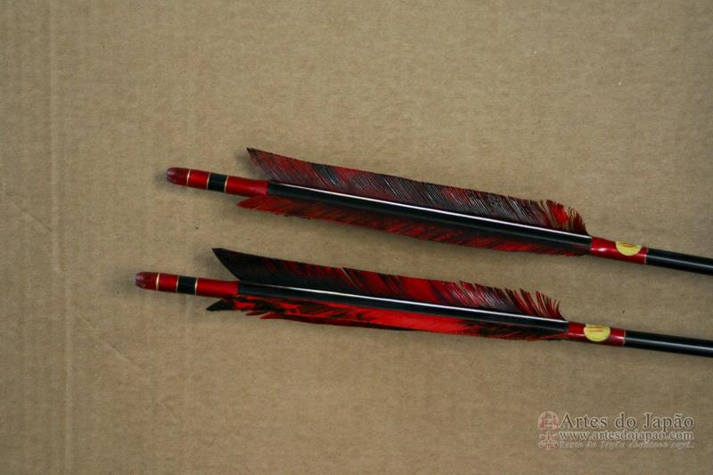 Pena das flechas utilizadas atualmente para a prática.